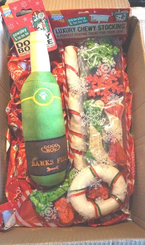 "DOG CHRISTMAS BOX WITH LUXURY CHEW STOCKING & 11"" PLUSH SQUEAKY CHAMPAGNE BOTTLE"